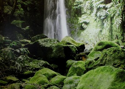 Chase | Azores - 6863-waterfall