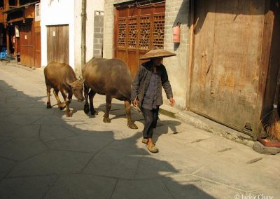 China | Chase-0877
