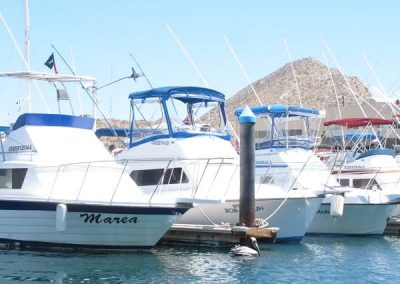 Fishing yachts in Cabo
