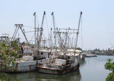 Shrimp boat cemetary